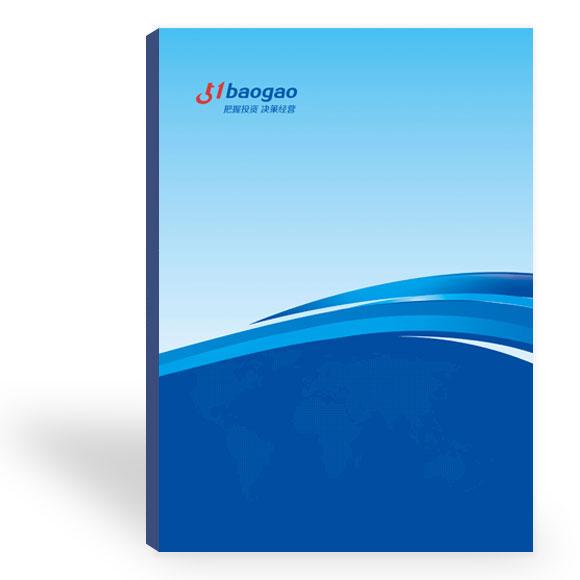 2020-2025年中国互联网+担保行业发展潜力分析及投资战略规划分析报告
